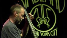 Audio «Bassist Dave Holland über Miles Davis» abspielen.