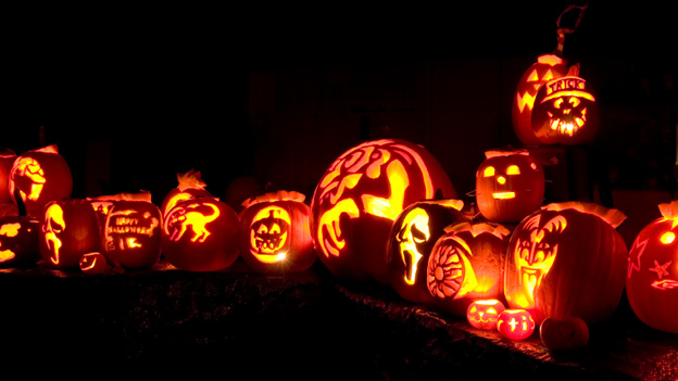 Pumpkin Carving Show Long Island
