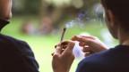 Gemäss Schätzungen konsumieren bis zu 500'000 Menschen Cannabis in der Schweiz