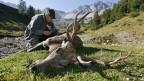 Ein Jäger