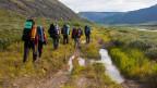 Eine Gruppe von Wanderern im Gelände.