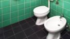 Toilette und Bidet.