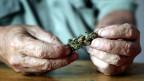 Auch ältere Menschen greifen gerne zu Cannabis.