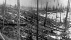 Audio «Heute vor 108 Jahren: Das «Tunguska-Ereignis» in Sibirien» abspielen.