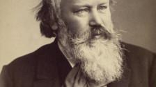 Audio «Johannes Brahms: Serenade Nr.1 D-Dur op.11» abspielen.