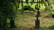 Audio «Riskieren – Das lange Gespräch: Tod und Nachhaltigkeit» abspielen.