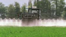 Audio «Pestizide: Schweiz unter Europas Schlusslichtern» abspielen.