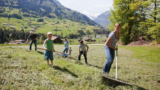 Harte Arbeit: Freiwilliger Bergeinsatz bei einer Bergbauernfamilie.