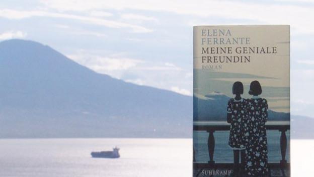 Meine Geniale Freundin Elena Ferrante